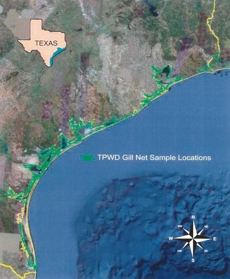 Map of gill net sampling locations