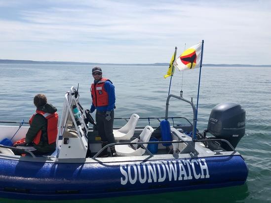 Soundwatchwhaleflag.jpeg