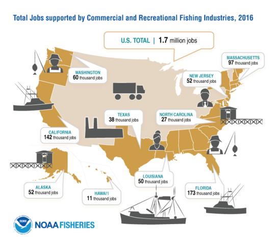 FEUS2016_Infographic_JobsMap_FINAL.png