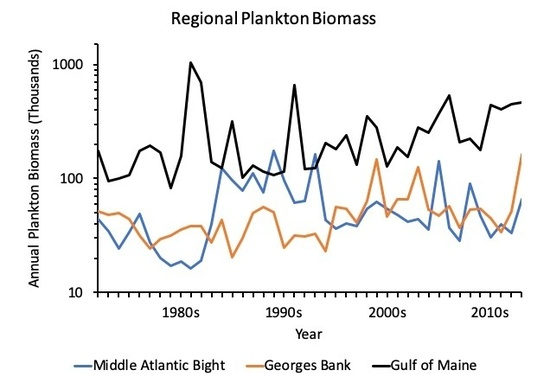 line graph of annual plankton biomass from the late 1970s to late 2010s with lines for the Middle Atlantic Bight, the Georges Bank, and the Gulf of Maine.  This illustrates how long-term data can help look for trends.