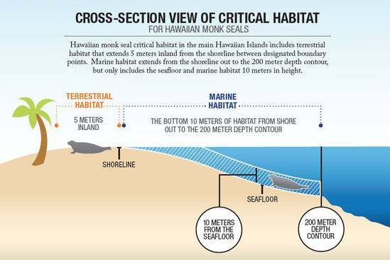 Infographic showing monk seal critical habitat in main Hawaiian Islands.