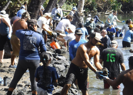Volunteers restore an ancient rock wall at Kīholo Fishponds in West Hawai'i.Credit: Nancy Erger.