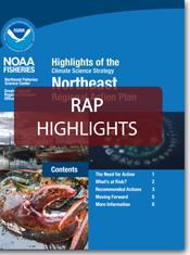 ne-rap-highlights.png