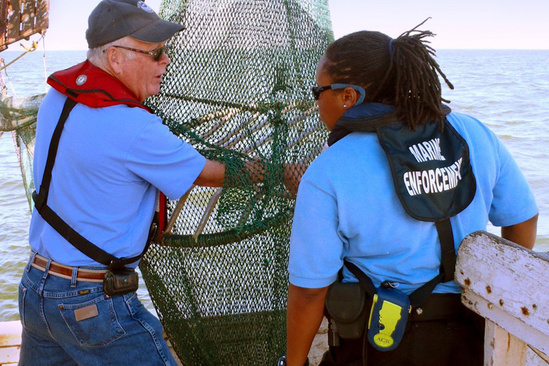 Enforcement specailists conducting TED inspection on fishing boat.