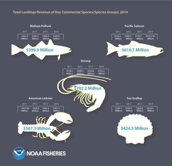 FEUS2014_Infographic_FINAL_KeySpecies.png