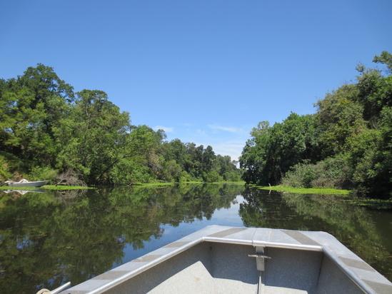 boat on sacramento river 4608x3456 USFWS.jpg