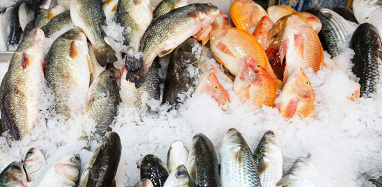 final-rule-seafood-monitoring-import-program.jpg