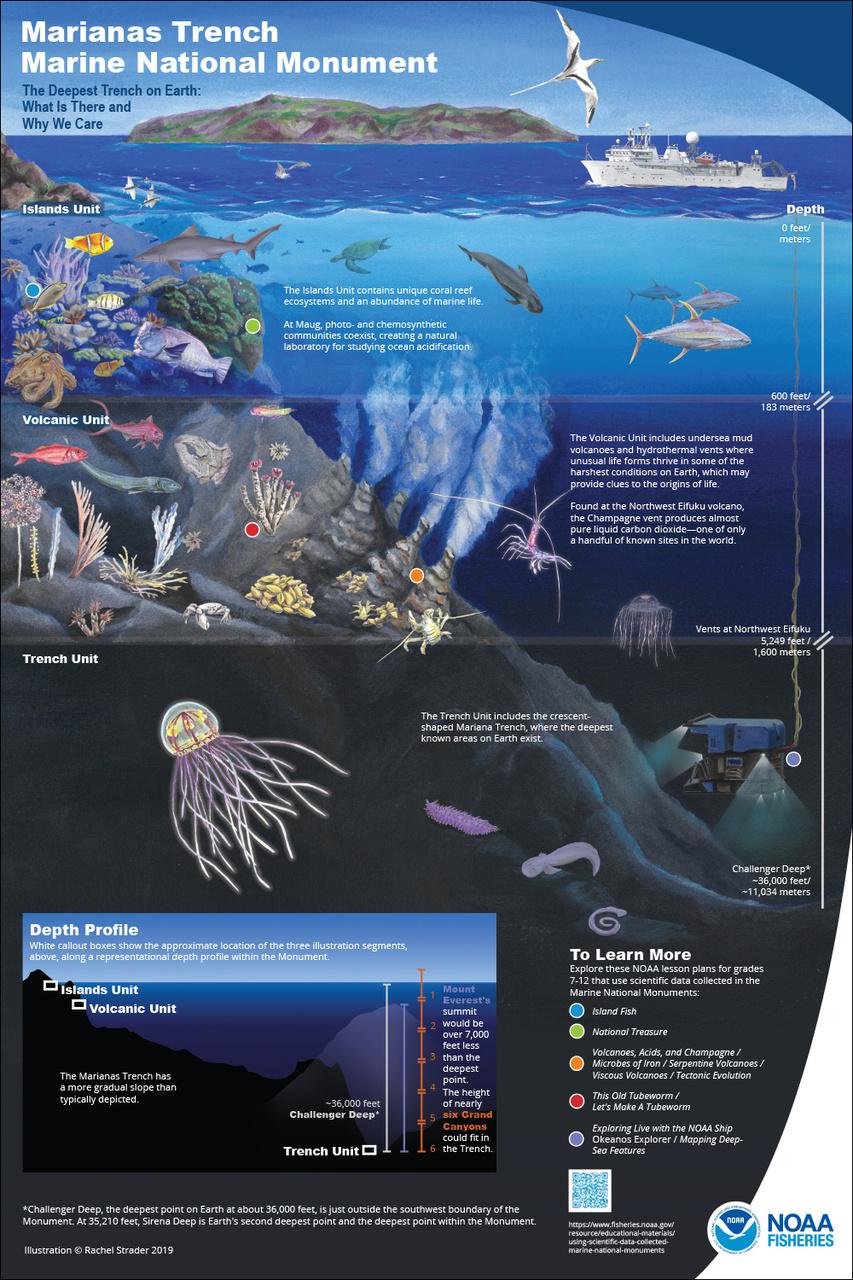 1000x1500-mtmnm-edu-poster-th-rachel-strader-NOAA-PIRO.jpg