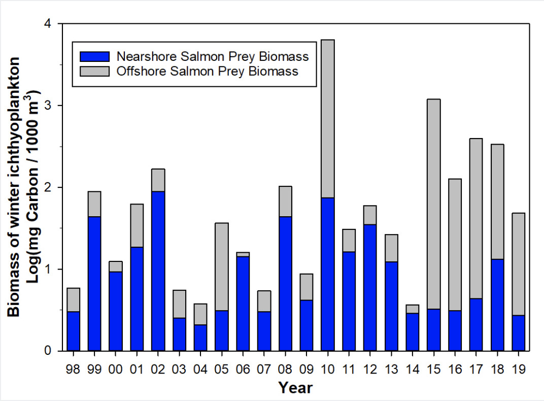 Figure WI-01.  Estimates of total winter ichthyoplankton biomass from 1998 to present.  Proportions composed of fish larvae considered prey items for juvenile salmon are represented by blue bars..jpg
