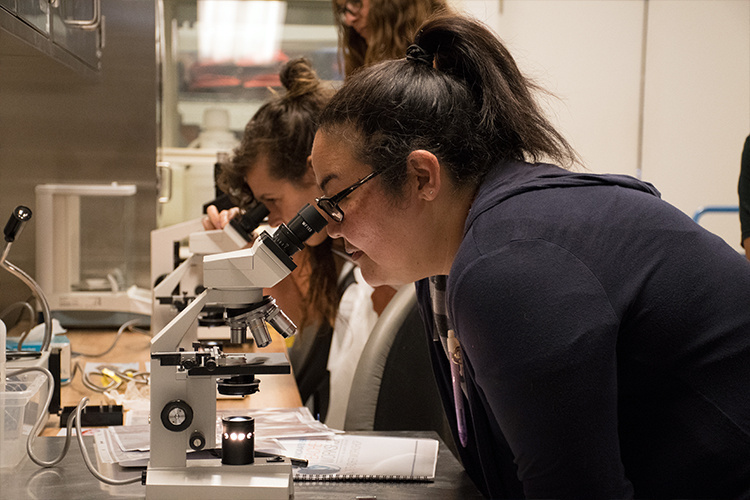 Teacher participant at Fisheries workshop looking under microscope.