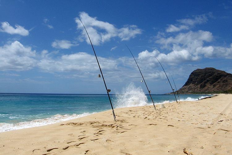 750x500-recreational-fishing-hawaii.jpg