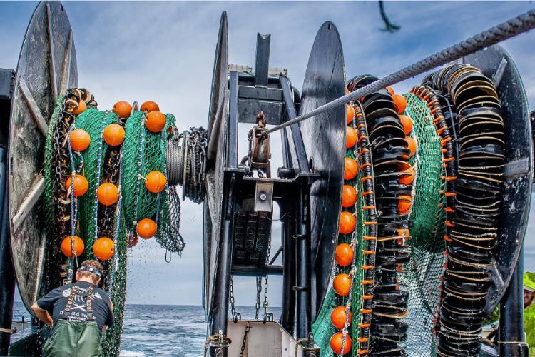 fishing vessel karen elizabeth's twin trawl by calvin alexander