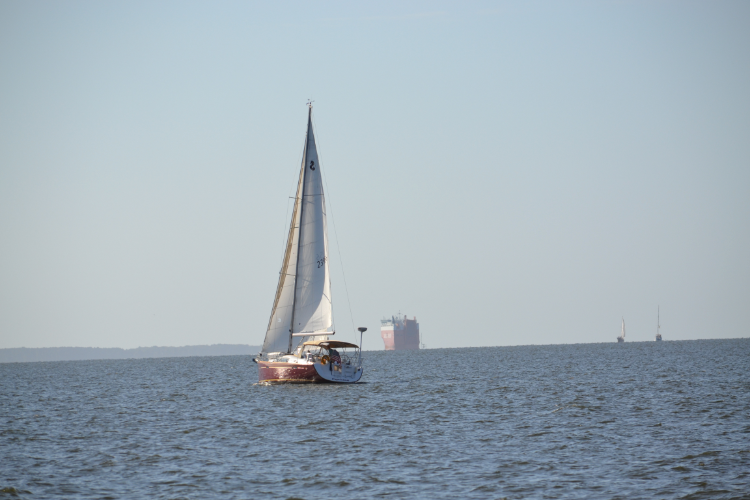 sailboat in a busy harbor by the office of coast survey
