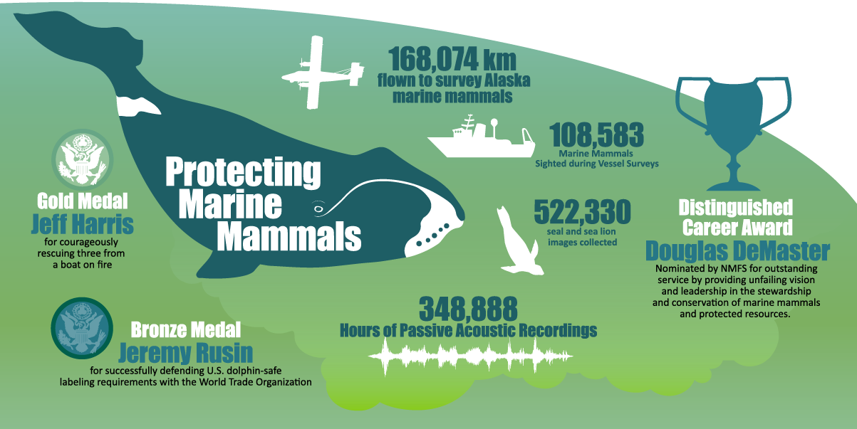 "Alaska Fisheries Science Center 2019 Year in Review infographic ""Protecting Marine Mammals"""