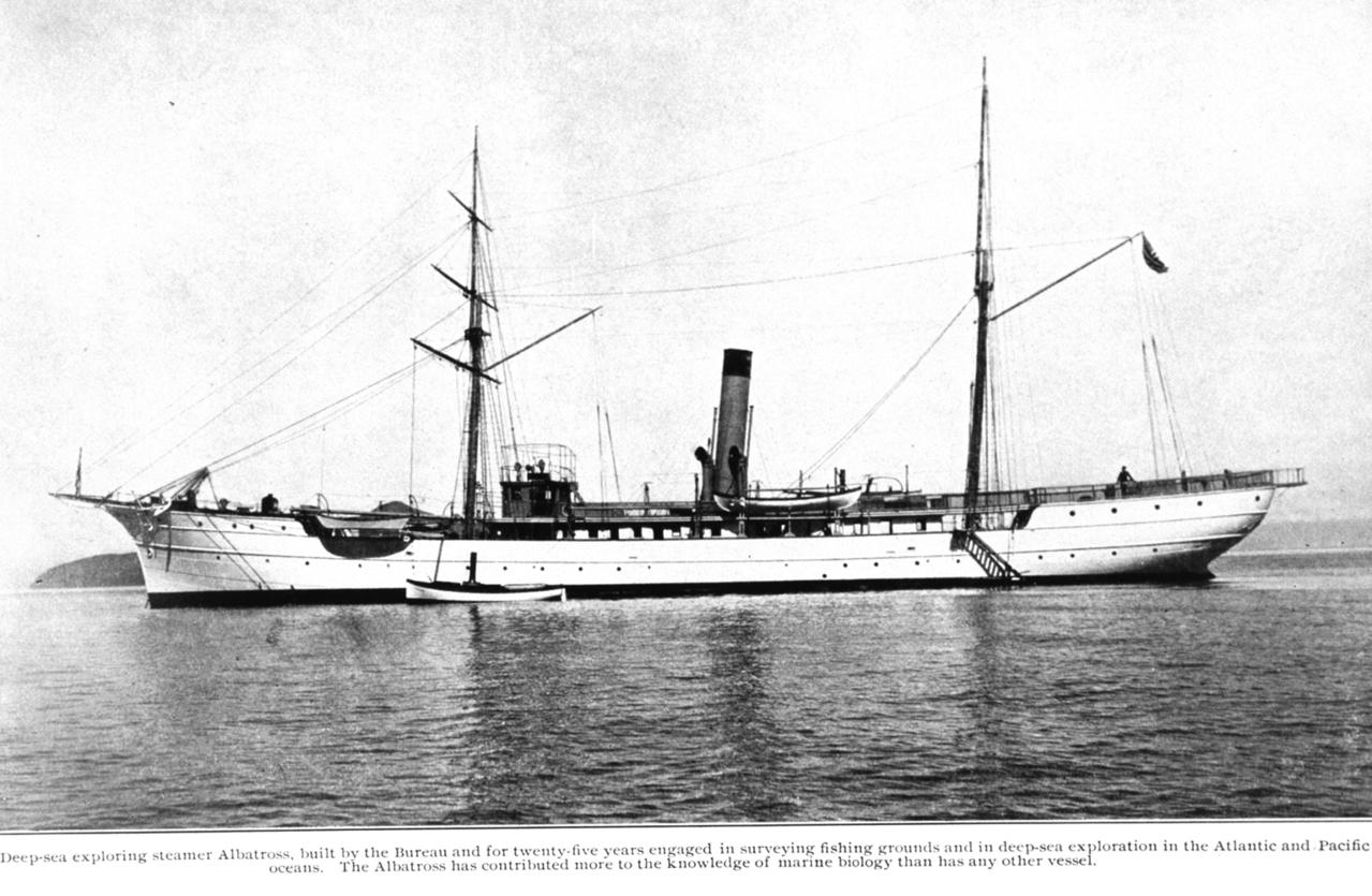 Research vessel Albatross underway