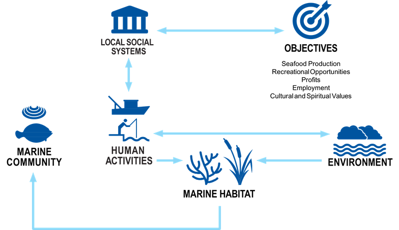 A conceptual model diagram with icons and arrows showing that linkages between environment, habitat, marine communities, human activities, and social systems all affect our ability to achieve resource management objectives.