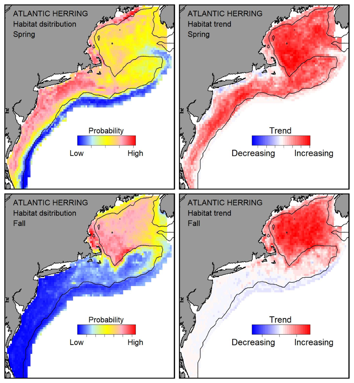 Top row: Probable habitat distribution for Atlantic herring showing the highest concentration and increasing trend in the Gulf of Maine during the spring. Bottom row: Probable habitat distribution for Atlantic herring showing the highest concentration and increasing trend in the Gulf of Maine during the fall.