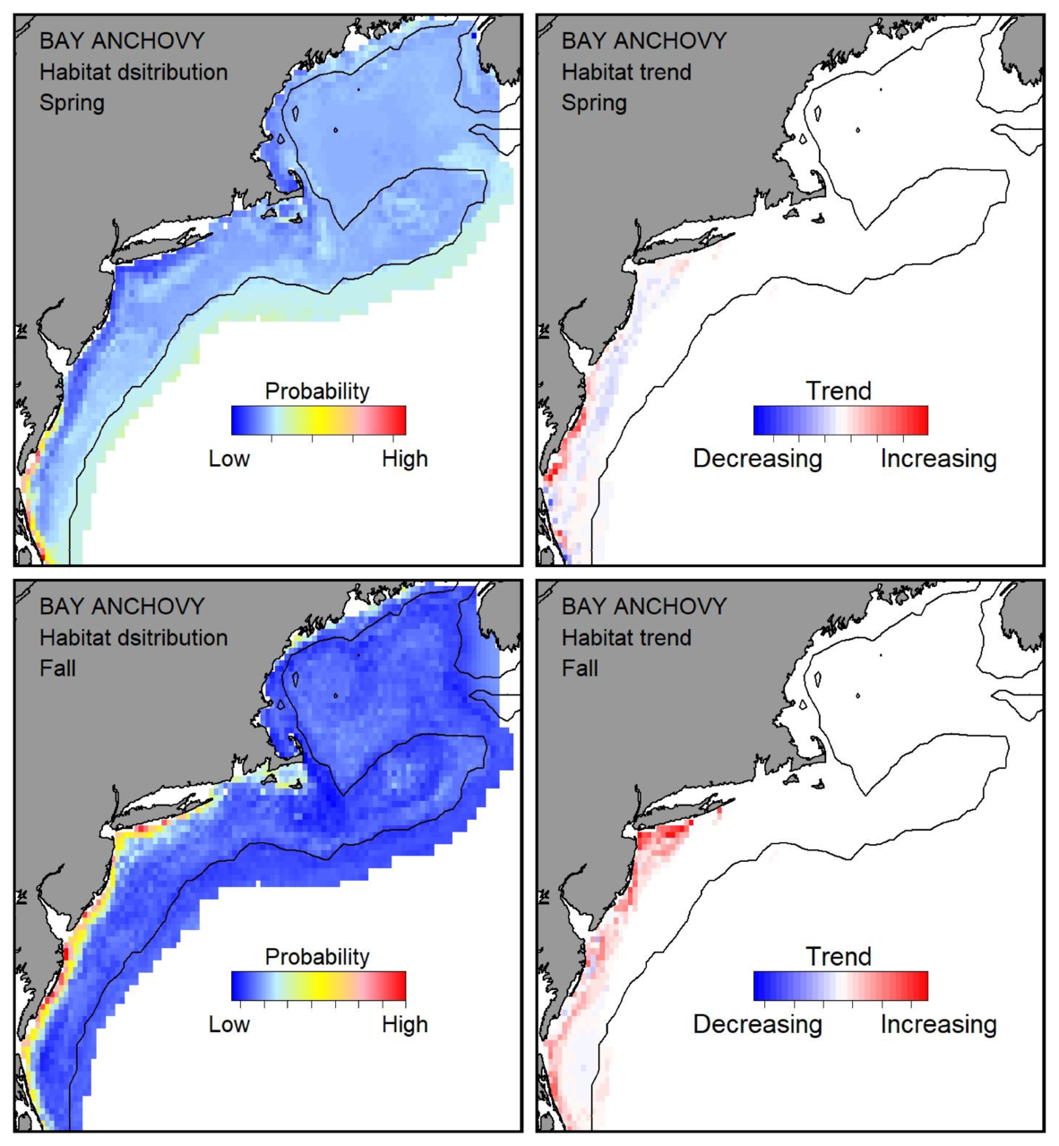 Top row: Probable habitat distribution for bay anchovy showing the highest concentration and increasing trend in the Gulf of Maine during the spring. Bottom row: Probable habitat distribution for bay anchovy showing the highest concentration and increasing trend in the Gulf of Maine during the fall.