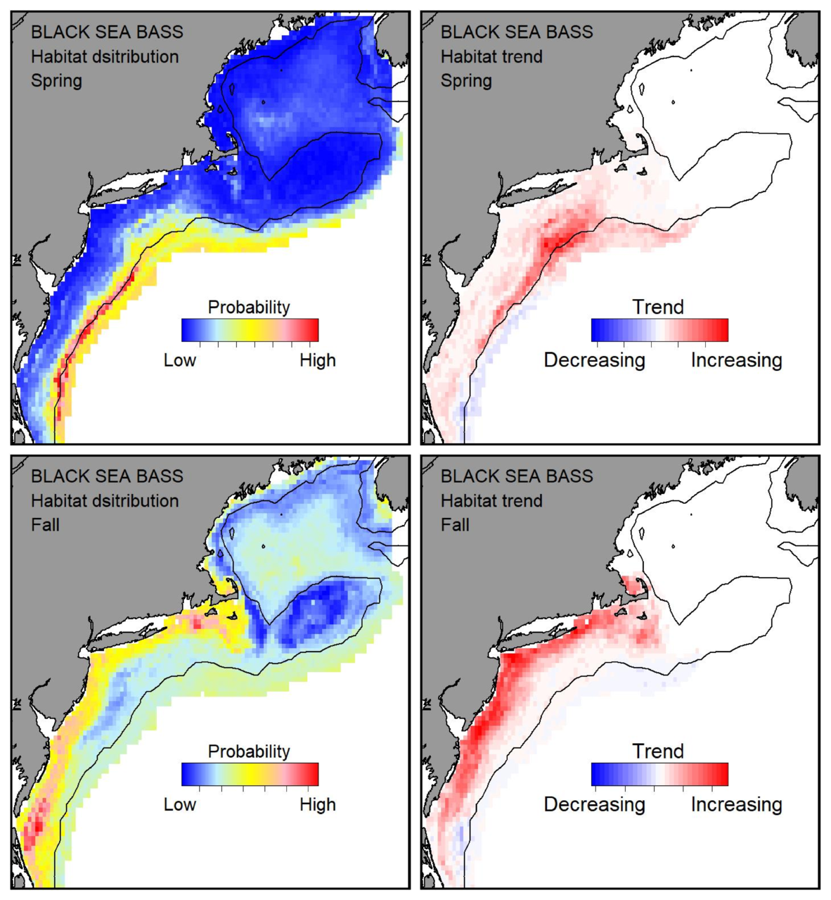 Probable habitat distribution for black sea bass showing the highest concentration and increasing trend in the Gulf of Maine during the spring. Bottom row: Probable habitat distribution for black sea bass showing the highest concentration and increasing trend in the Gulf of Maine during the fall.