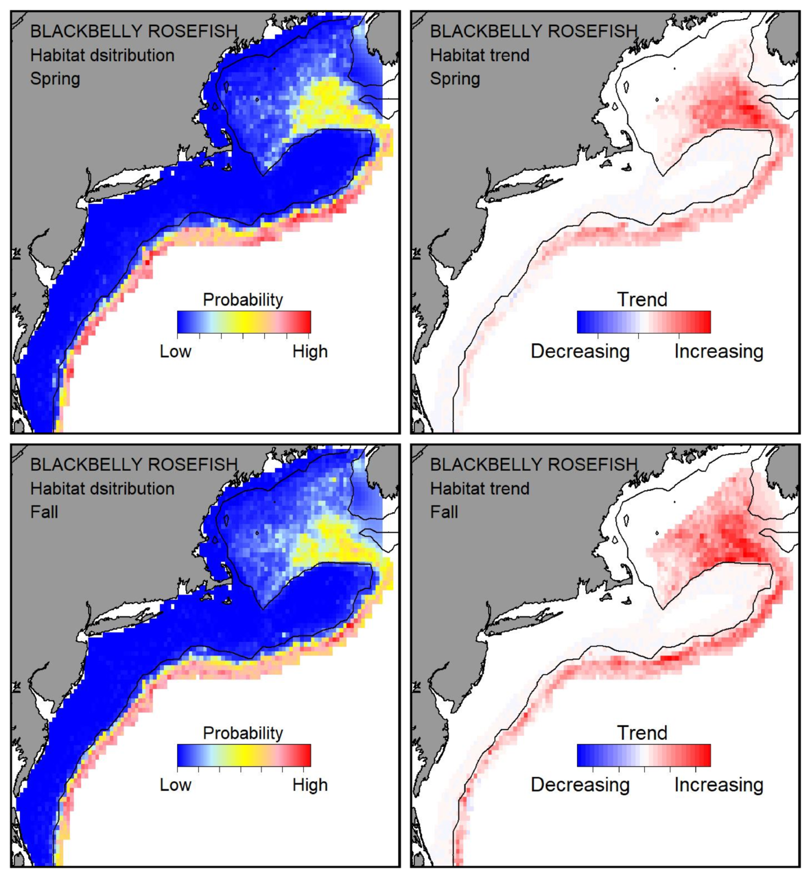 Probable habitat distribution for blackbelly rosefish showing the highest concentration and increasing trend in the Gulf of Maine during the spring. Bottom row: Probable habitat distribution for blackbelly rosefish showing the highest concentration and increasing trend in the Gulf of Maine during the fall.