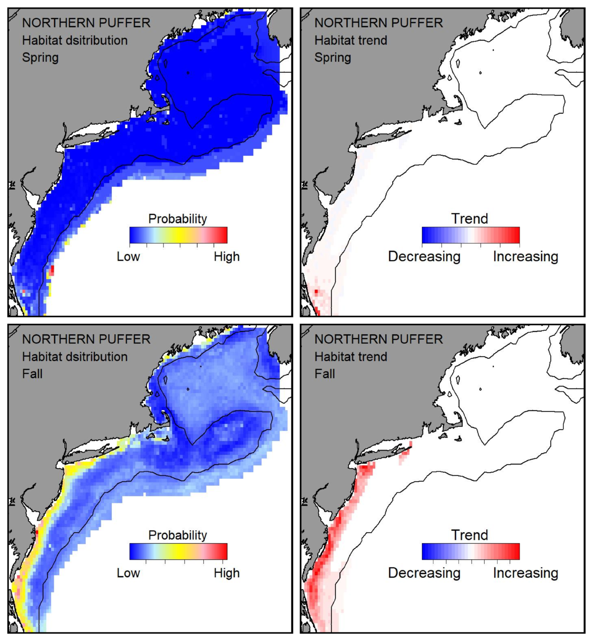 Probable habitat distribution for northern puffer showing the highest concentration and increasing trend in the Gulf of Maine during the spring. Bottom row: Probable habitat distribution for northern puffer showing the highest concentration and increasing trend in the Gulf of Maine during the fall.