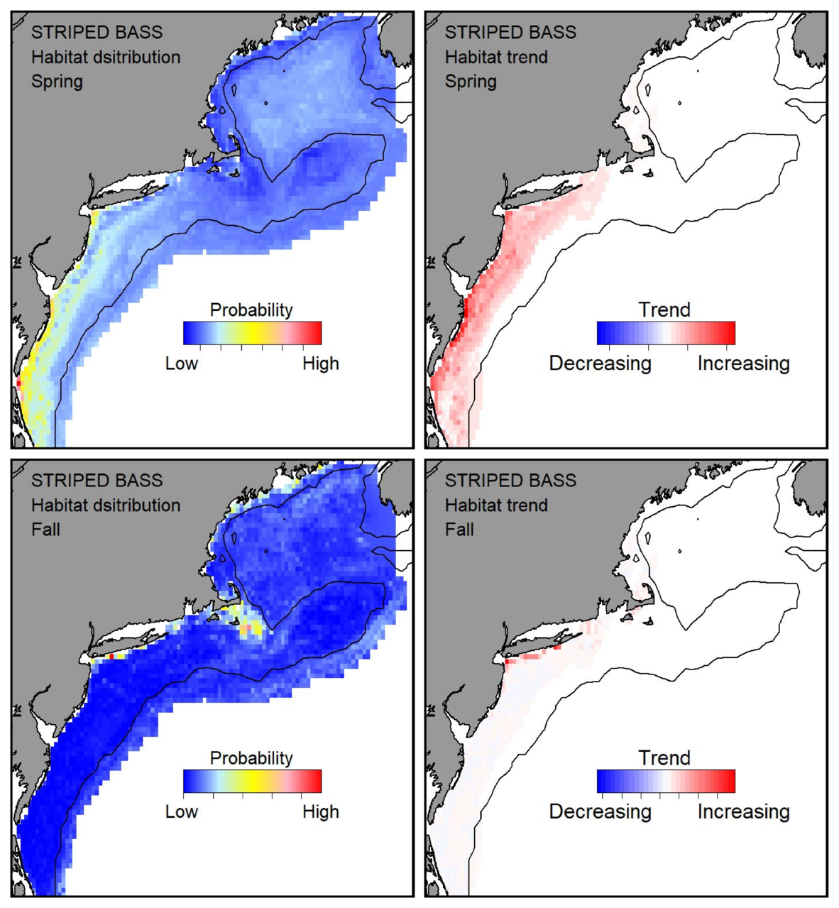 Probable habitat distribution for striped bass showing the highest concentration and increasing trend in the Gulf of Maine during the spring. Bottom row: Probable habitat distribution for striped bass showing the highest concentration and increasing trend in the Gulf of Maine during the fall.