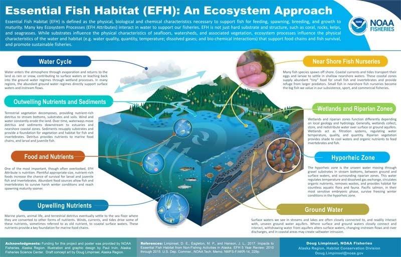 efh-ecosystem-poster-0919.jpg