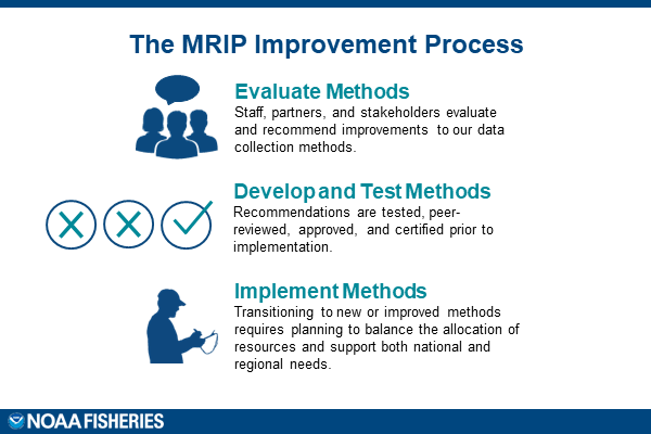 MRIP-Improvement-Process.png