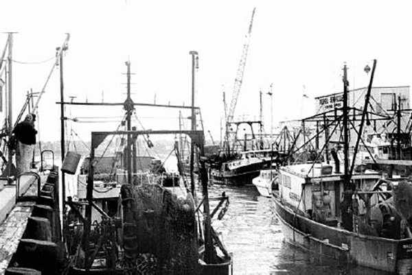 fishing boats docked in New Bedford