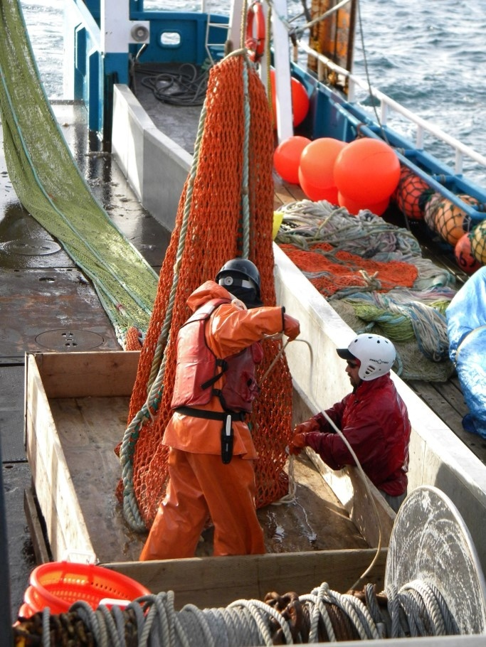 Ship's crew working the surface trawl codend.
