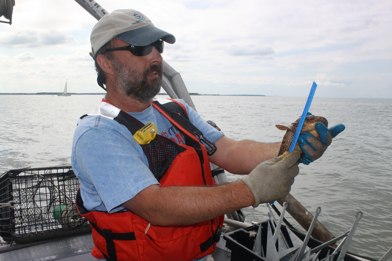 NOAA-scientist-measures-fish.jpg
