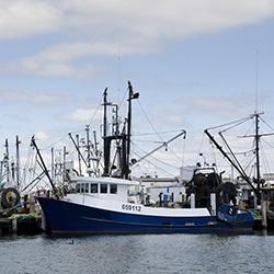 Northeast Fishing Boats.jpg