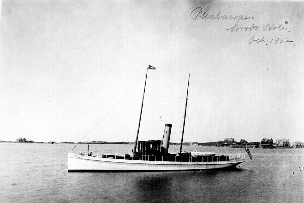 Phalarope in 1902