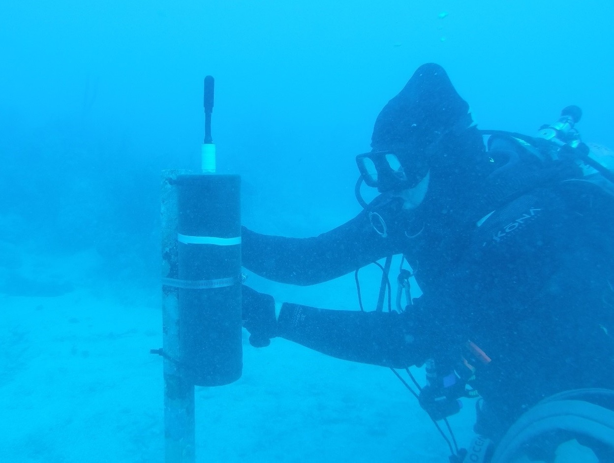 diver deploying acoustic recorder underwater