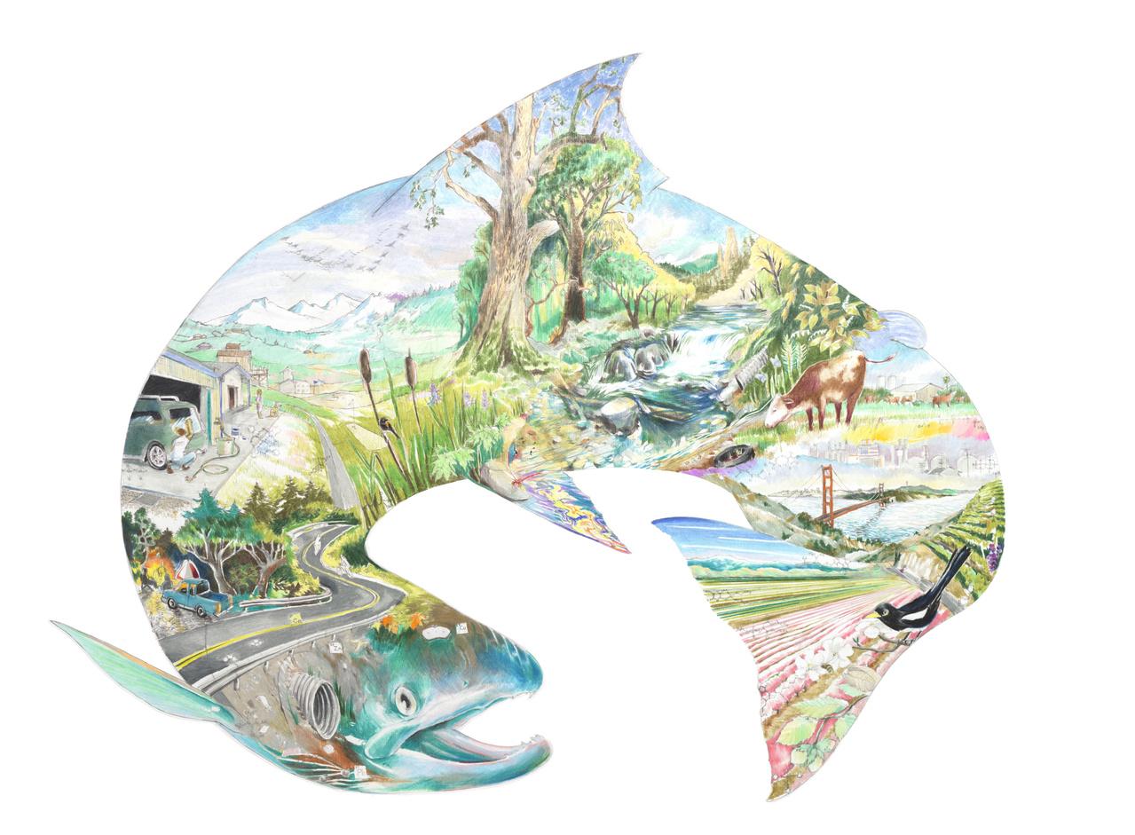 salmon_mural_color.jpg