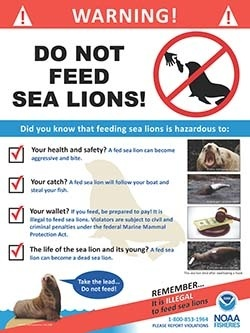 steller-sea-lions-do-not-feed-english-sign250.jpg