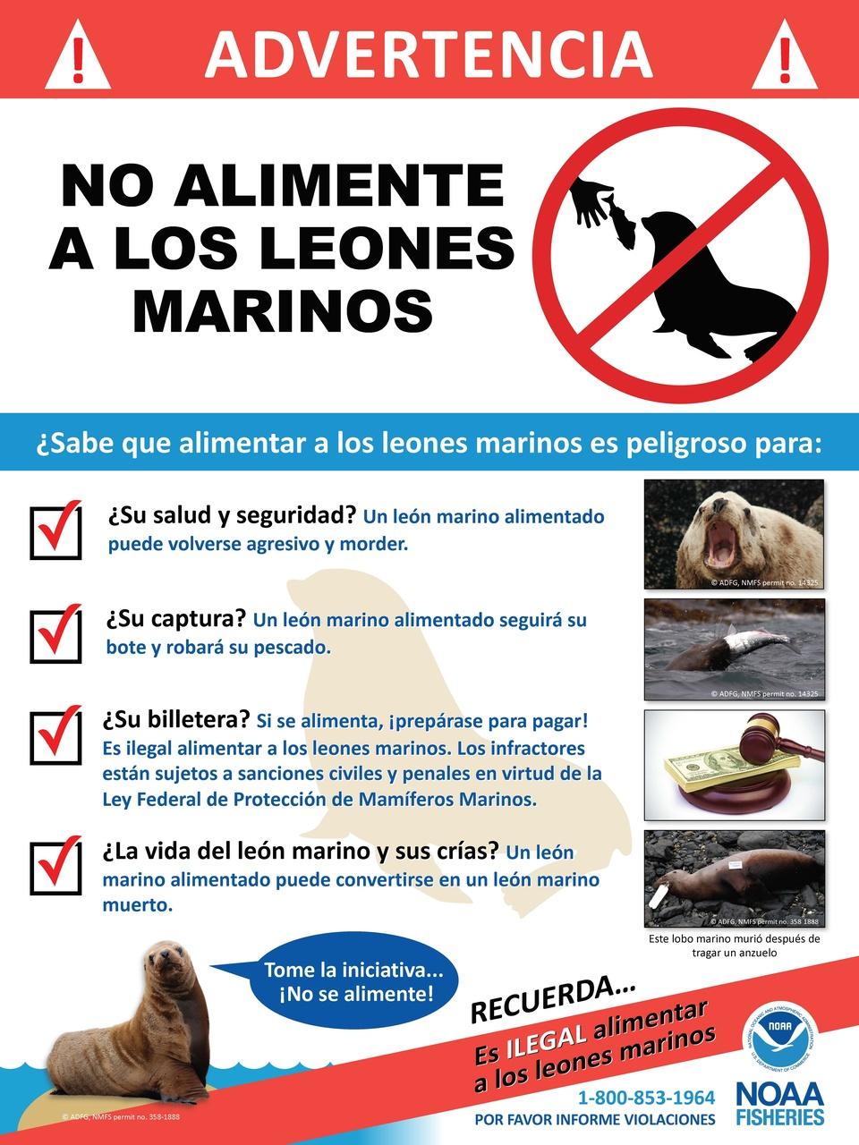 steller-sea-lions-do-not-feed-spanish-sign.jpg