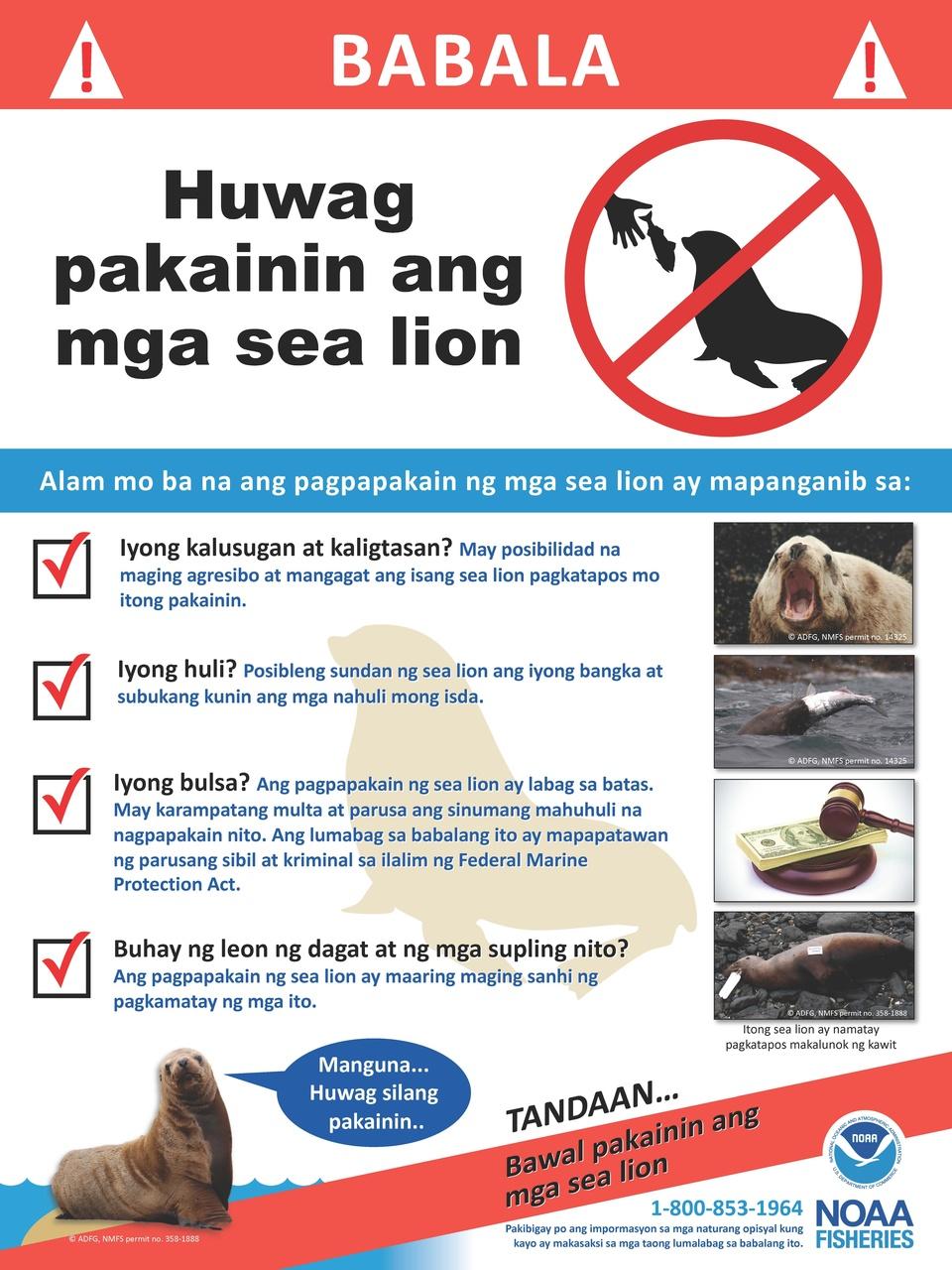 steller-sea-lions-do-not-feed-tagalog-sign.jpg