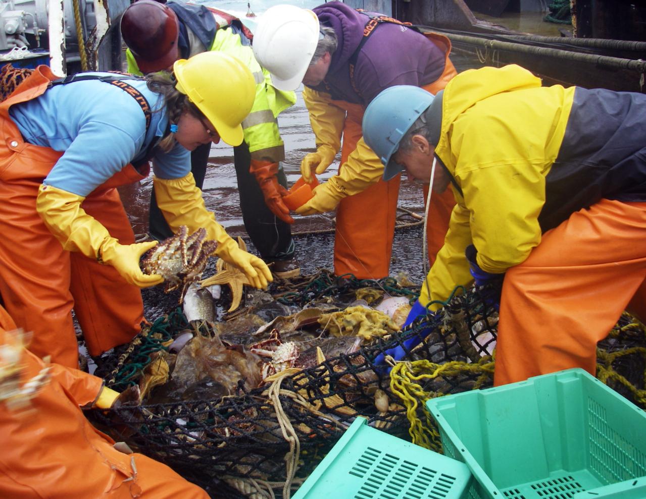 Researchers participate in a field survey.