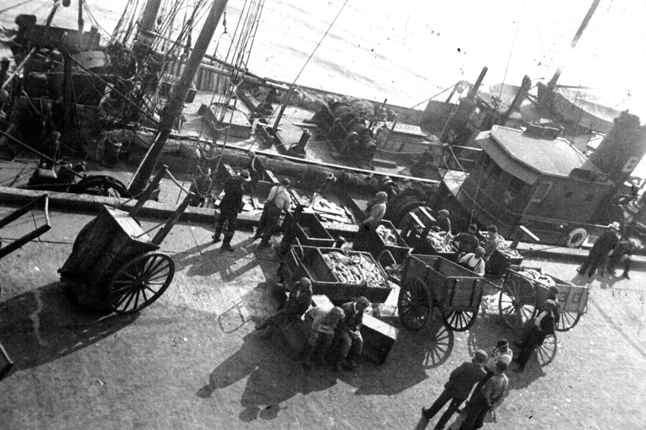 Unloading otter trawl, F/V Exeter, Boston fish pier, 1931.