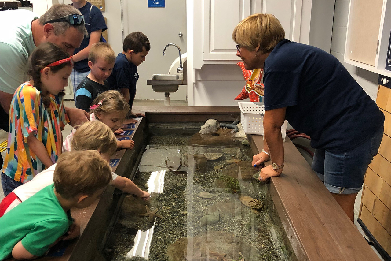 Adults and children look into aquarium touch tank supervised by volunteer.