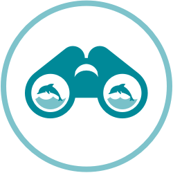 Wildlife Viewing Icon.png