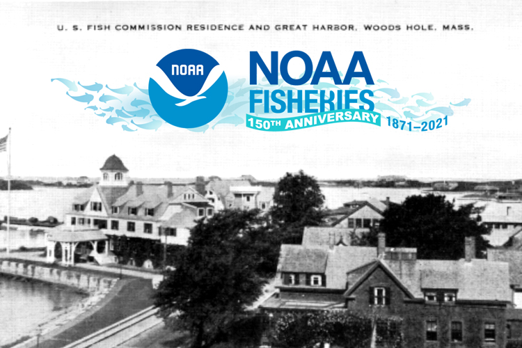 An early image of the first U.S. fisheries science laboratory located in Woods Hole, Massachusetts. A banner commemorating the 150th anniversary of NOAA Fisheries' founding is overlaid on the image