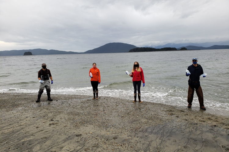 Photo of Alaska Fisheries Science Center genetics researchers on a beach holding bottled sand samples.