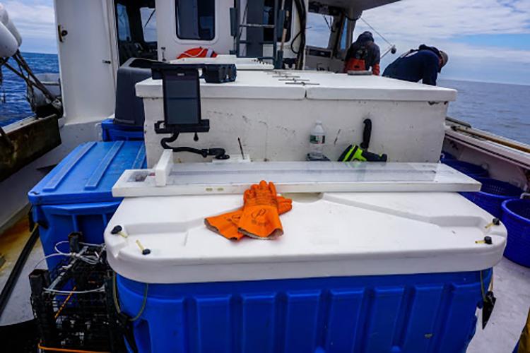 Gloves, measuring board, and cooler on deck.