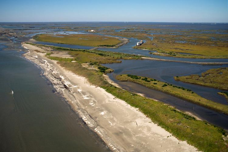 Aerial view of shoreline and wetlands