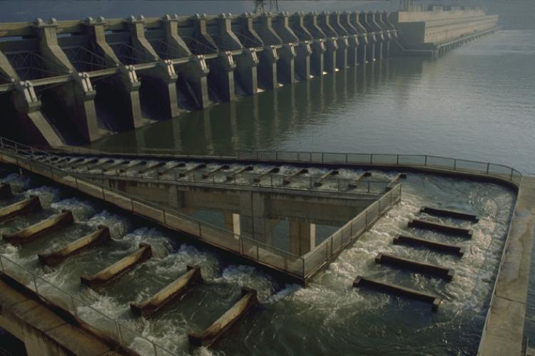 1_John Day Dam fishway 2.jpg