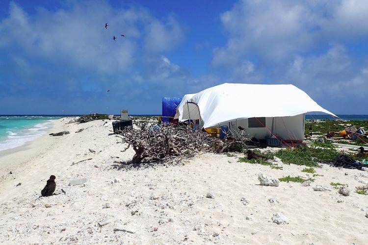 750x500-field-camp-canvas-tent-east-land-NOAA-PIFSC.jpg