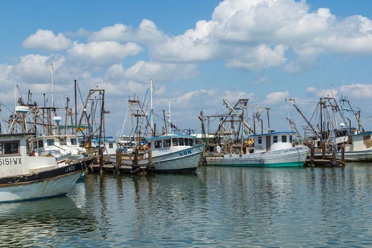750x500-Fishing-boats-in-Fulton-Harbor-TX-iStock-518344274.jpg