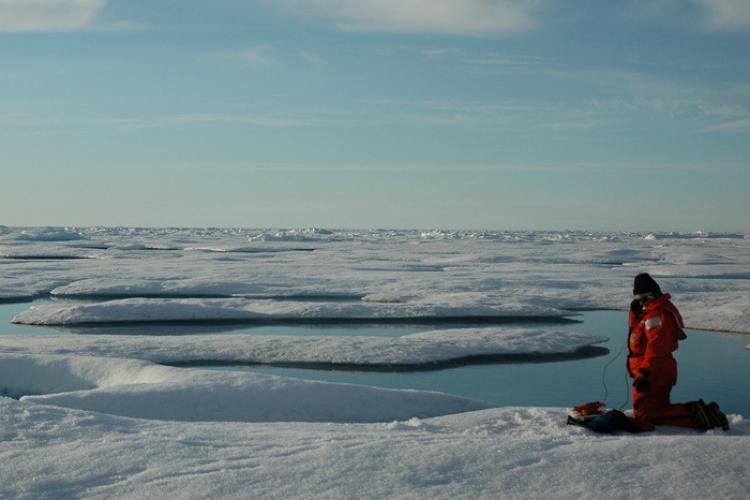 750x500-scientist-in-Arctic.jpg